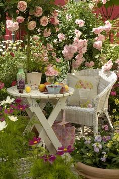 My future patio. Love the roses.