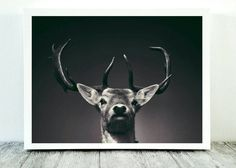 Woodland Deer Print, Last Minute Gift, Fathers Day Present, Stag Head, Instant Download, Rustic Office Decor, Digital Download, Home Art