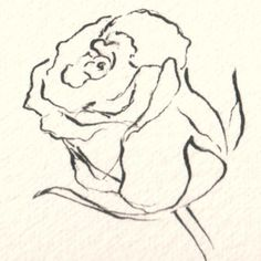 Make Your Flower Drawings Blossom with These Tips: How to Draw Flowers in Pen, Ink and Color