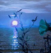 Featured Photos - Fantasy Sunset by Karen Horn