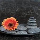Pebbles and gerbera Gerbera Flower, Flowers, Home Accessories, Orange, Floral, Home Decor Accessories, Royal Icing Flowers, Flower, Flower