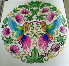 Coloring Books Colouring Prismacolor Johanna Basford Instagram Photos Garden Design