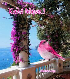 Greek Language, Mina, Kirchen, Happy Thoughts, Beautiful Images, Happy Birthday, Birds, Holiday, Painting