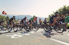 TOP 5 BICICLETAS DE CARRETERA: El pelotón de la Vuelta disputa hoy la Marcha…
