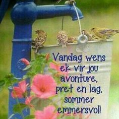 This Photo was uploaded by Good Morning Picture, Good Morning Good Night, Morning Pictures, Good Night Quotes, Lekker Dag, Birthday Quotes For Daughter, Bird Quotes, Afrikaanse Quotes, Goeie Nag