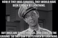 Barney Fife Quotes Adorable Barney Fife Quotes  Google Search  Inspiration  Pinterest . Review