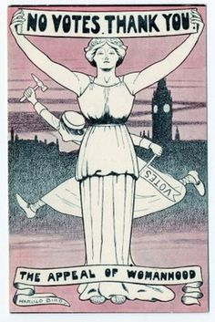 "This is a cartoon in an anti suffrage newspaper of a woman holding up a sign that says women don't want the vote. In his diary, president roosevelt said ""women getting the right to vote ghouls throw the world back a thousand years."