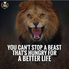 "904 Likes, 8 Comments - Your Success Is Our Goal (@risebeyond.fam) on Instagram: ""Stay hungry, stay on top! TAG SOMEONE! #risebeyond #hungry #betterlife"""