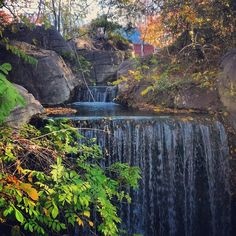 The waterfalls by Gibbon Island in Cameron Park Zoo, Waco, Texas ...