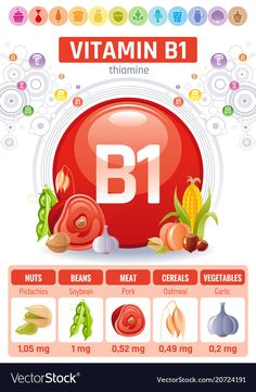 Thiamine vitamin food icons healthy eating vector image on VectorStock B Food, Food Menu, Health And Nutrition, Health And Wellness, Healthy Food Quotes, Vitamin A Foods, Vitamins For Women, Food Icons, Diet Menu