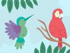 Rundo y el colibrí