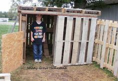 Shady Grove Homestead: The Re-Designed Pallet Chicken Coop