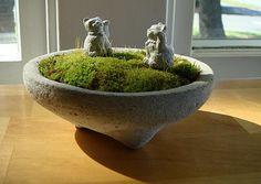 Zen Concrete Miniature Moss Terrarium & Zen Mini Sculpture