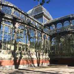 Crystal Palace, Buen Retiro Park - Madrid. Worth a peek inside! And there is a beautiful pond next door with the cutest turtles just chilling on the steps!
