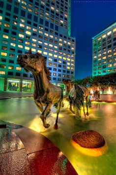 Mustangs at Las Colinas in Irving, Texas.  This bronze sculpture commemorates the wild mustangs that were historically important throughout Texas – it said to be the largest equestrian sculpture in the world.  The horses are intended to represent the drive, initiative and unfettered lifestyle that were fundamental to Texas in its pioneer days.