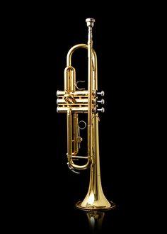 Trumpet by Steve Wampler