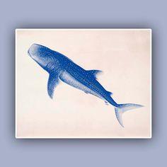 Nature printed WhaleShark 10x8 Blue print  Marine Wall by AlgaNet, $13.50