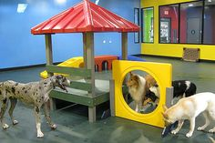 Inspiration for daycare play equipment. Safe, easy to clean.