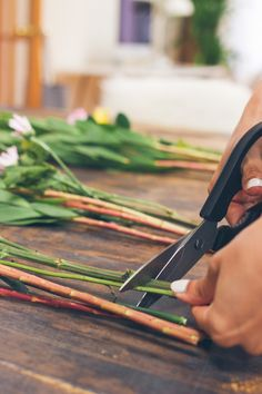 trimming flower stems, how to trim flowers