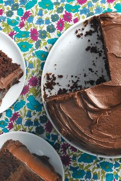 Sourdough Chocolate Cake Recipe (this recipe was amazing! And a great way to use up discarded starter.)