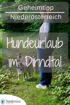Das Pielachtal liegt im Mostviertel von Niederösterreich und ist ideal für den Urlaub mit Hund geeignet. Unterkunft und erste Wanderung findet ihr hier. Urlaub | Wandern | Hund | Reise | Wanderung | Hundereise | Reiseblog | Österreich | Dirndltal Explore, Dogs, Fun, Travel, Roadtrip, Hotels, Europe, Dog T Shirts, Cool Dogs