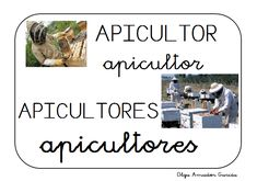 BITS DE VOCABULARIO ANIMALES APICULTOR Blended Learning, Bee, Language, This Or That Questions, Education, Children, Families, Spanish, Google