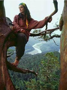 Julia Butterfly Hill, Environmentalist who spent 738 days living in a tree in order to save the old growth forests, one very dedicated lady.