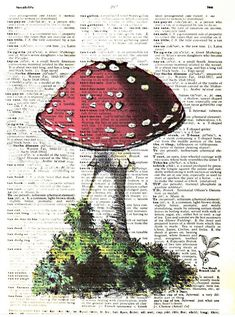 Art N Wordz Red Mushroom Original Dictionary Sheet Pop Art Wall or Desk Art Print Poster