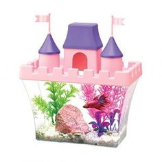 Cookie Privacy Policy – Proto Type Fourteen Glass Fish Tanks, Small Fish Tanks, Cool Fish Tanks, Betta Aquarium, Aquarium Kit, Planted Aquarium, Aquarium Stand, Glass Aquarium, Pink Castle