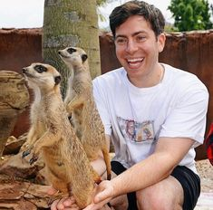 Hoodie Allen, Kangaroo, Hoodies, Animals, Animales, Baby Bjorn, Sweatshirts, Animaux, Parka