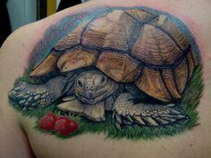 Tortoise Tattoo