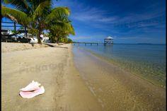 Nautical inn beach at seine bight, belize. by GETTY