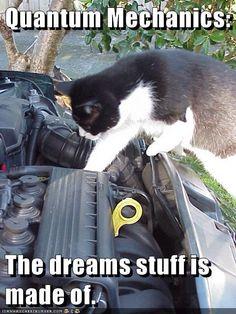 Quantum Mechanics:  The dreams stuff is made of. http://cheezburger.com/9017255936