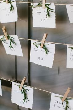 escort cards with herbs - photo by Braedon Photography http://ruffledblog.com/camping-wedding-at-half-moon-bay