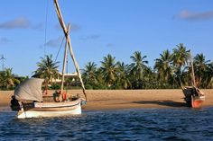 Welcome to our selection of hand-picked holiday houses, boutique homestays, private safari camps and other unique and special places in Kenya and Tanzania Kenya Travel, Tanzania, Renting A House, Sailing Ships, Safari, African, Boat, Island, Lamu Kenya