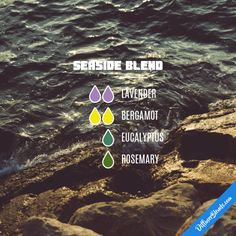 Seaside Blend - Essential Oil Diffuser Blend