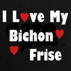 I Love My Bichon Frise Tee on CafePress.com