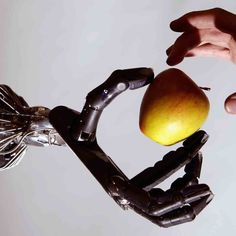 Artificial Intelligence and Human Randomness?