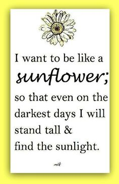 "except ""I am like a sunflower"" or ""we must be sunflowers"""