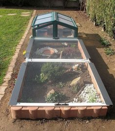 I have seen numerous suggestions for Russian tortoise diet Some great Some awful. Russian Tortoises are nibblers and appreciate broad leaf plants. Tortoise House, Tortoise Habitat, Tortoise Table, Turtle Care, Pet Turtle, Turtle Enclosure, Reptile Enclosure, Reptile Cage, Outdoor Tortoise Enclosure