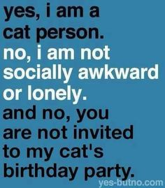 Yes I am a cat person. No I am not socially awkward or lonely. And no you are - Funny Cat Quotes Crazy Cat Lady, Crazy Cats, Image Chat, Cat Birthday, Birthday Memes, Birthday Cards, Happy Birthday, Cat Quotes, Cat Sayings