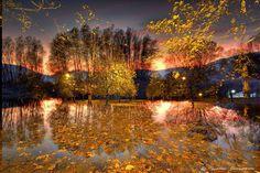 golden light...