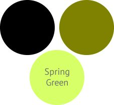 How To Wear Spring green For A Shaded Winter (Deep Winter)Spring green is a light green-yellow. It's a little to yellow for a shaded winter. But an olive green with black looks great on a winter and is a fun pairing with the spring green
