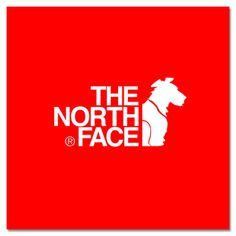 Northface for Dogs (Conceptual) Branding & Advertising Design