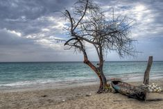 25 of the Coolest Beaches in the World, Negril, Jamaica