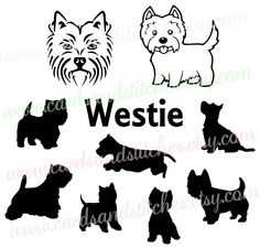 Westie SVG - Westie Silhouette SVG - West Highland Terrier - Digital Cutting File - Cricut Cut - Instant Download - Svg, Dxf, Jpg, Eps, Png by cardsandstitches on Etsy