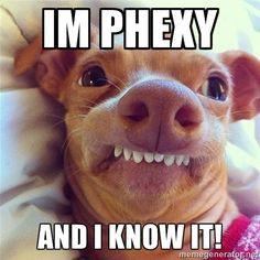 Phexy