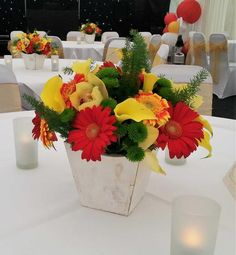21MT Red and Orange Gerbera, Green Kermit and foliage