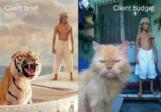 Client and budget