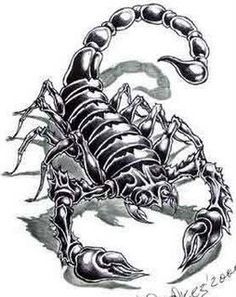 Parábola Chinesa – O Mestre e o escorpião